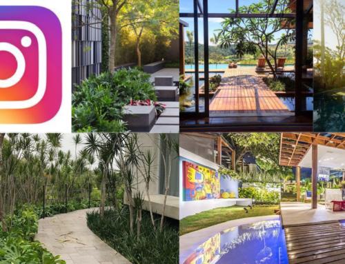 15 Contas de Instagram de Paisagismo para seguir